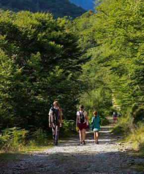 Passeggiate vicino a Pamiers