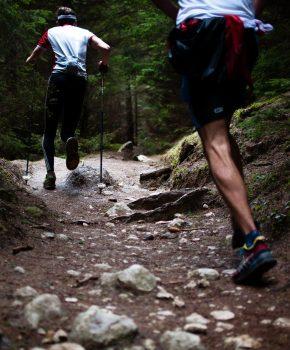 Cursos de trail