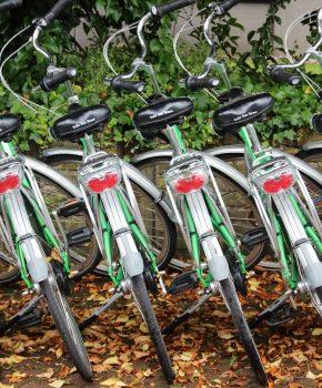 Tous les loueurs de vélos