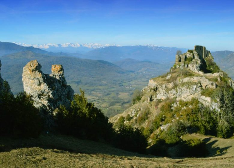 THE CASTLE OF ROQUEFIXADE